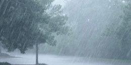 Che cos'è un impianto di disoleazione prima pioggia per piazzali?