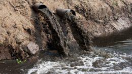 Fanghi attivi in aerazione prolungata nella depurazione delle acque reflue